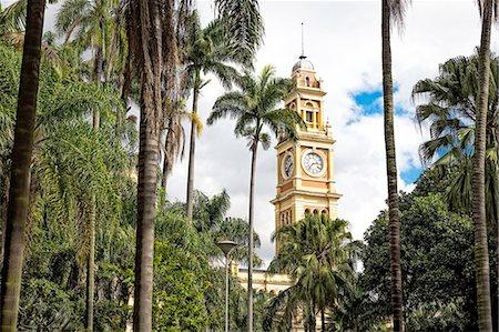 View of Luz railway station clock tower and palms, Sao Paulo, Brazil Stock Photo - Premium Royalty-Free, Code: 649-08180473