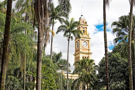 View of Luz railway station clock tower and palms, Sao Paulo, Brazil Stock Photo - Premium Royalty-Free, Code: 649-08180473