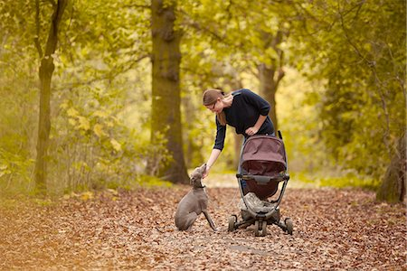 Mid adult mother pushing baby carriage and petting dog in autumn park Stock Photo - Premium Royalty-Free, Code: 649-08381275