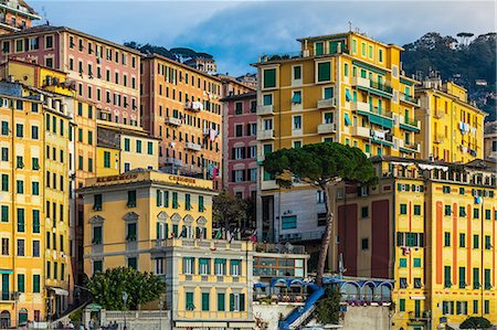 Detail of colorful apartments and hotels on hillside, Camogli, Liguria,  Italy Stock Photo - Premium Royalty-Free, Code: 649-08381765