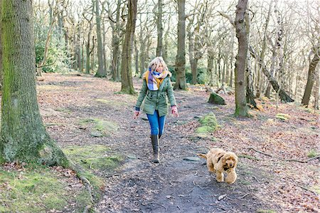 Woman taking puppy for walk in forest Stock Photo - Premium Royalty-Free, Code: 649-08548638