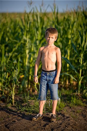 Boy in a corn field Stock Photo - Premium Royalty-Free, Code: 649-08563506
