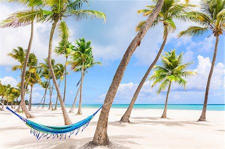 Hammock between palm tree's on beach, Dominican Republic, The Caribbean Stock Photo - Premium Royalty-Free, Code: 649-08577292