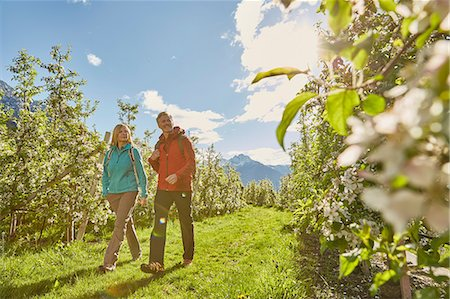 Mature couple hiking through field, Meran, South Tyrol, Italy Stock Photo - Premium Royalty-Free, Code: 649-08714051