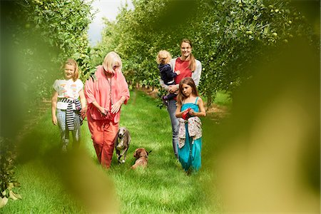 family apple orchard - Family walking dog in apple orchard Stock Photo - Premium Royalty-Free, Code: 649-08859593