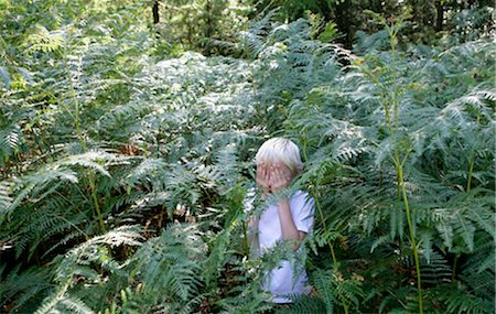 Boy hiding in ferns Stock Photo - Premium Royalty-Free, Code: 649-02666009