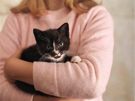 preteen girl pussy - Girl's Hands Holding Kitten Stock Photo - Premium Royalty-Free, Code: 649-02666646