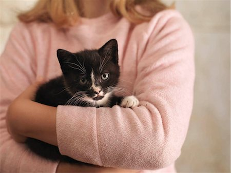 preteen girl pussy - Girl's Hands Holding Kitten Stock Photo - Premium Royalty-Free, Code: 649-02666646