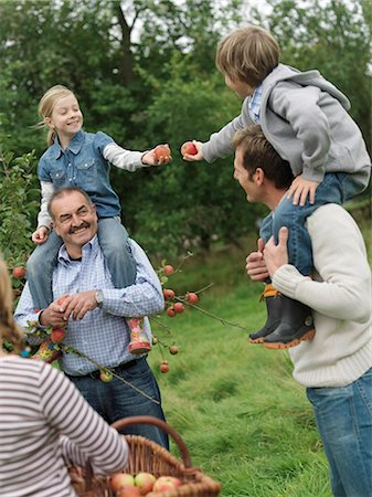 family apple orchard - Children and adults picking apples Stock Photo - Premium Royalty-Free, Code: 649-03008686