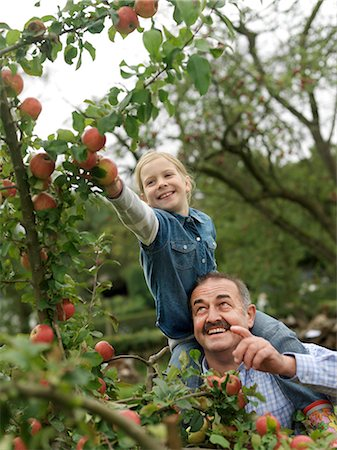 family apple orchard - Man and girl picking apples on shoulders Stock Photo - Premium Royalty-Free, Code: 649-03008687