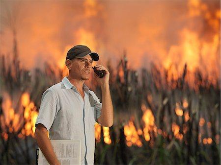 farm phone - Worker With Burning Sugar Cane Stock Photo - Premium Royalty-Free, Code: 649-03078208