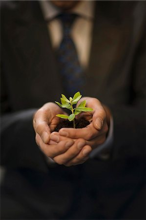 man holding plant in hands Stock Photo - Premium Royalty-Free, Code: 649-03447073