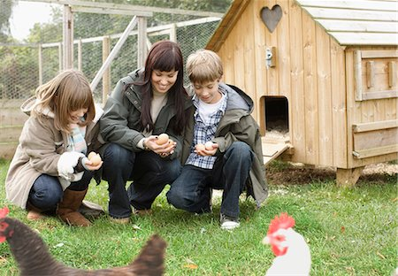 Mother and children feeding chickens Stock Photo - Premium Royalty-Free, Code: 649-03447779