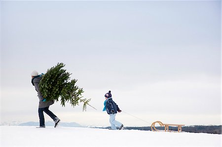 Mother and son carrying christmas tree Stock Photo - Premium Royalty-Free, Code: 649-03447858