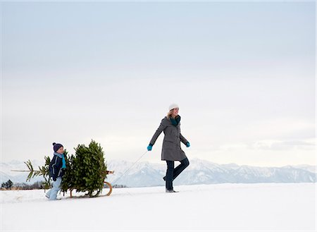 Mother and son carrying christmas tree Stock Photo - Premium Royalty-Free, Code: 649-03447859