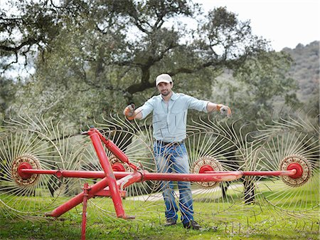 Man on farm with hay rake Stock Photo - Premium Royalty-Free, Code: 649-03487510