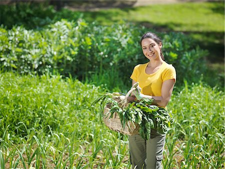 farmhand (female) - Woman with freshly picked veg in basket Stock Photo - Premium Royalty-Free, Code: 649-03487543