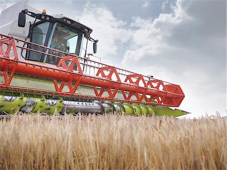 Farmer driving combine harvester Stock Photo - Premium Royalty-Free, Code: 649-03622422