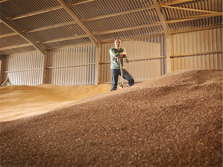 Farmer in grain store Stock Photo - Premium Royalty-Free, Code: 649-03622446