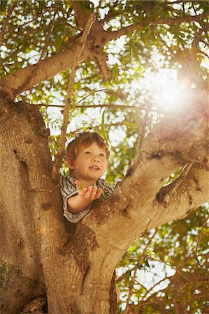 Young boy climbing tree Stock Photo - Premium Royalty-Free, Code: 649-03769592