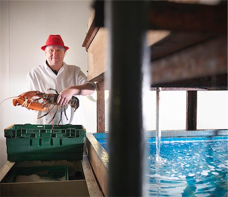 food processing plant - Worker holding lobster in plant Stock Photo - Premium Royalty-Free, Code: 649-03883812
