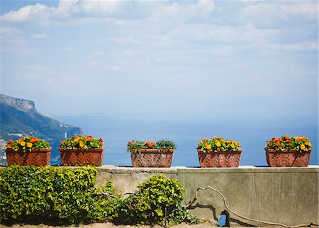 potted plant - Italy, Amalfi Coast, Ravello, Potter flowers on wall Stock Photo - Premium Royalty-Free, Code: 640-06050128