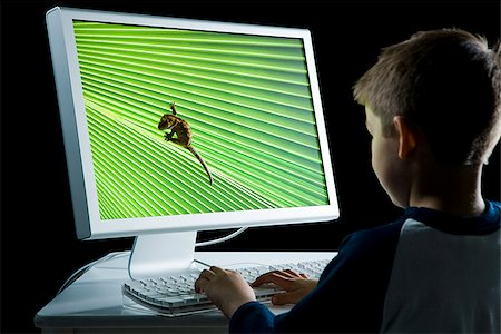 Rear view of boy at computer with lizard on monitor Stock Photo - Premium Royalty-Free, Code: 640-02775852