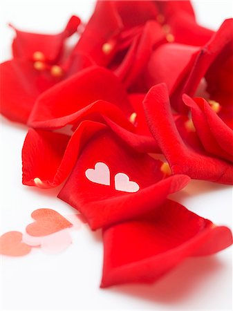 petal - Red rose petals and hearts Stock Photo - Premium Royalty-Free, Code: 659-06155392