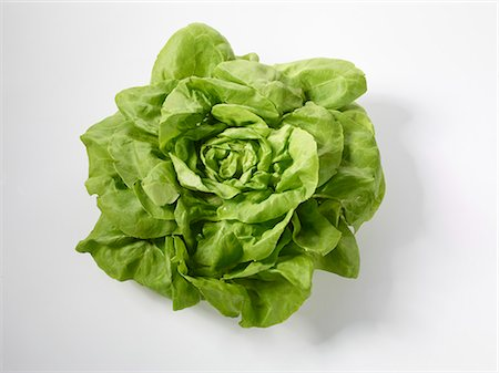 A lettuce Stock Photo - Premium Royalty-Free, Code: 659-06155607