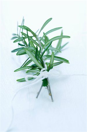 A bunch of fresh rosemary Stock Photo - Premium Royalty-Free, Code: 659-06151309