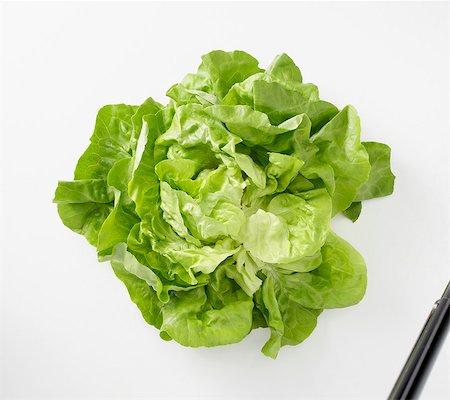 Fresh lettuce Stock Photo - Premium Royalty-Free, Code: 659-06151695