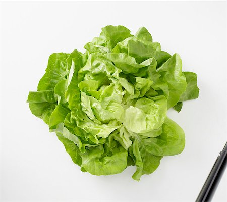 Fresh lettuce Stock Photo - Premium Royalty-Free, Code: 659-06151695