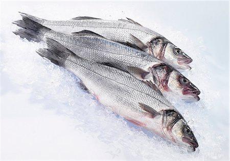 Three fresh sea bass on ice Stock Photo - Premium Royalty-Free, Code: 659-06153701