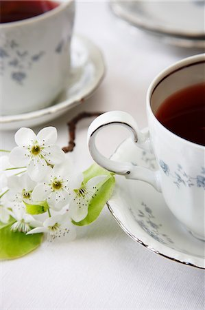 Two Cups of Tea with White Spring Flowers Stock Photo - Premium Royalty-Free, Code: 659-06184015