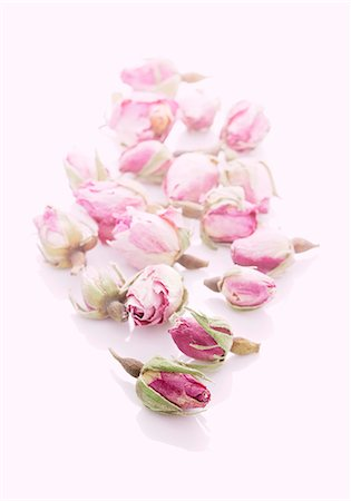 rose - Pink rose buds Stock Photo - Premium Royalty-Free, Code: 659-06184159