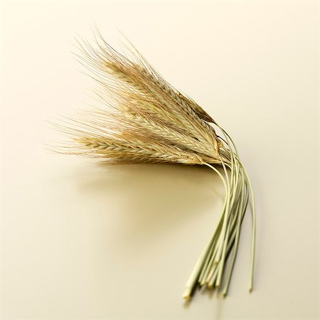 Ears of rye Stock Photo - Premium Royalty-Free, Code: 659-06184519