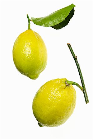 Two lemons with twig and leaf Stock Photo - Premium Royalty-Free, Code: 659-06185395