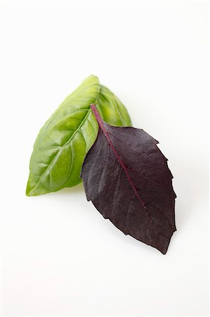 A leaf of basil and a leaf of purple basil Stock Photo - Premium Royalty-Free, Code: 659-06186277