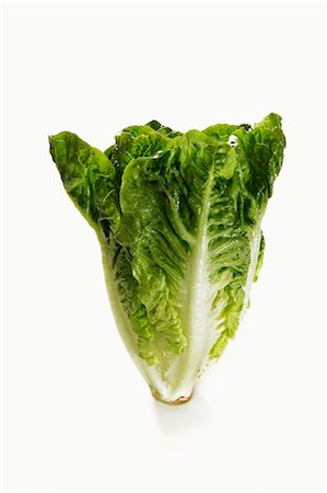 A mini cos lettuce Stock Photo - Premium Royalty-Free, Code: 659-06187345