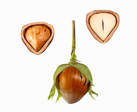 Hazel nut, whole and halved Stock Photo - Premium Royalty-Free, Code: 659-06187634