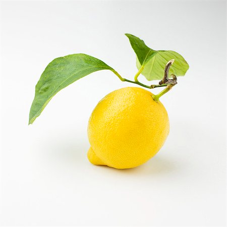 A lemon with a stem and leaves Stock Photo - Premium Royalty-Free, Code: 659-06372457