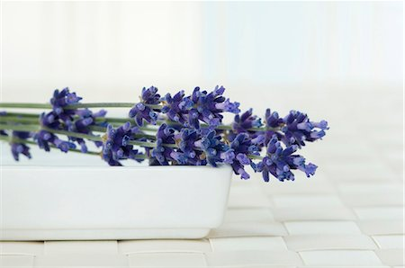 Lavender flowers in a bowl Stock Photo - Premium Royalty-Free, Code: 659-06373459