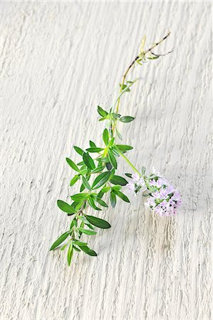 rustic - Thyme with flowers Stock Photo - Premium Royalty-Free, Code: 659-06493773