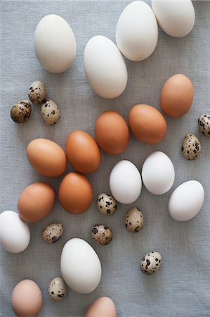 different - Various kinds of eggs Stock Photo - Premium Royalty-Free, Code: 659-06903395