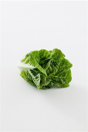 A romaine lettuce against a white background Stock Photo - Premium Royalty-Free, Code: 659-07028591
