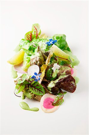 Mixed lettuce with cucumber, radish and edible flowers Stock Photo - Premium Royalty-Free, Code: 659-07068575