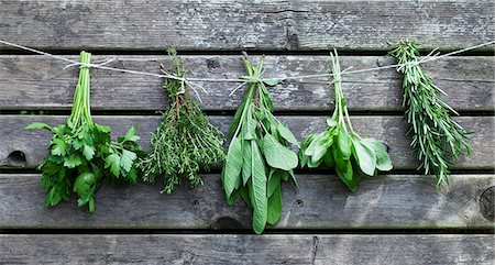 Bunches of herbs hanging against a wooden wall Stock Photo - Premium Royalty-Free, Code: 659-07068778