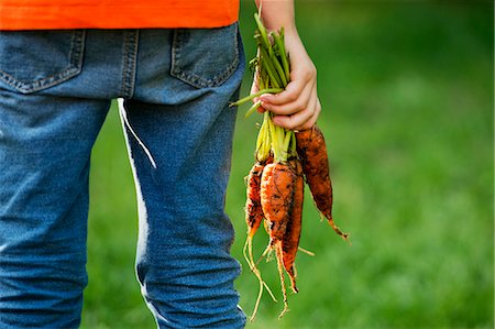 A child holding freshly harvested carrots Stock Photo - Premium Royalty-Free, Code: 659-07598249