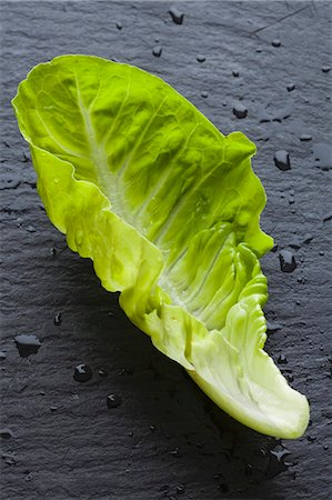 slate - A Lettuce Leaf Stock Photo - Premium Royalty-Free, Code: 659-07598751