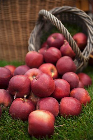 Lots of red apples on grass and in a basket Stock Photo - Premium Royalty-Free, Code: 659-07598982
